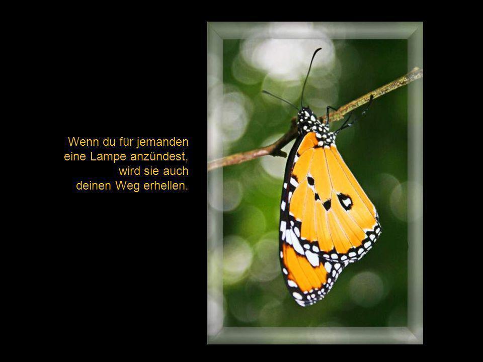 ein Austausch von Gedanken bedeutet nicht, die eigenen aufzugeben, vielmehr ihnen Flügel zu verleihen.