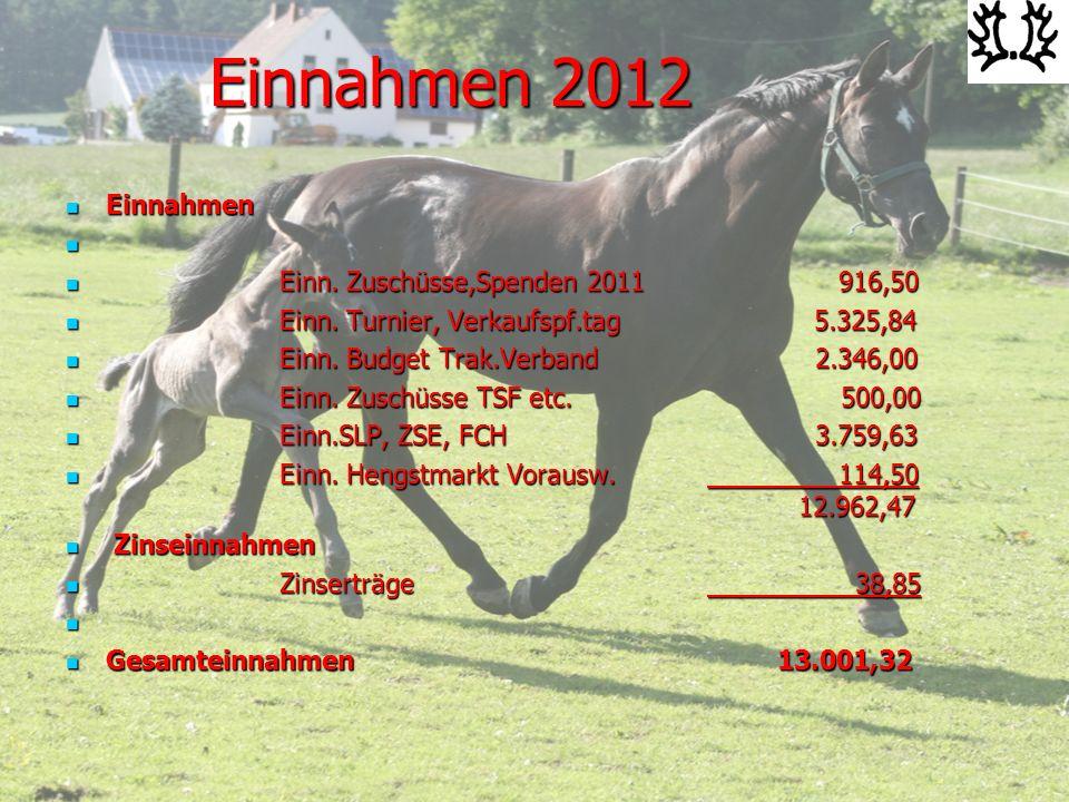 Ausgaben 2012 Versicherungen und Gebühren Versicherungen und Gebühren Versicherungen 190,88- Versicherungen 190,88- Kosten Veranstaltungen lfd.