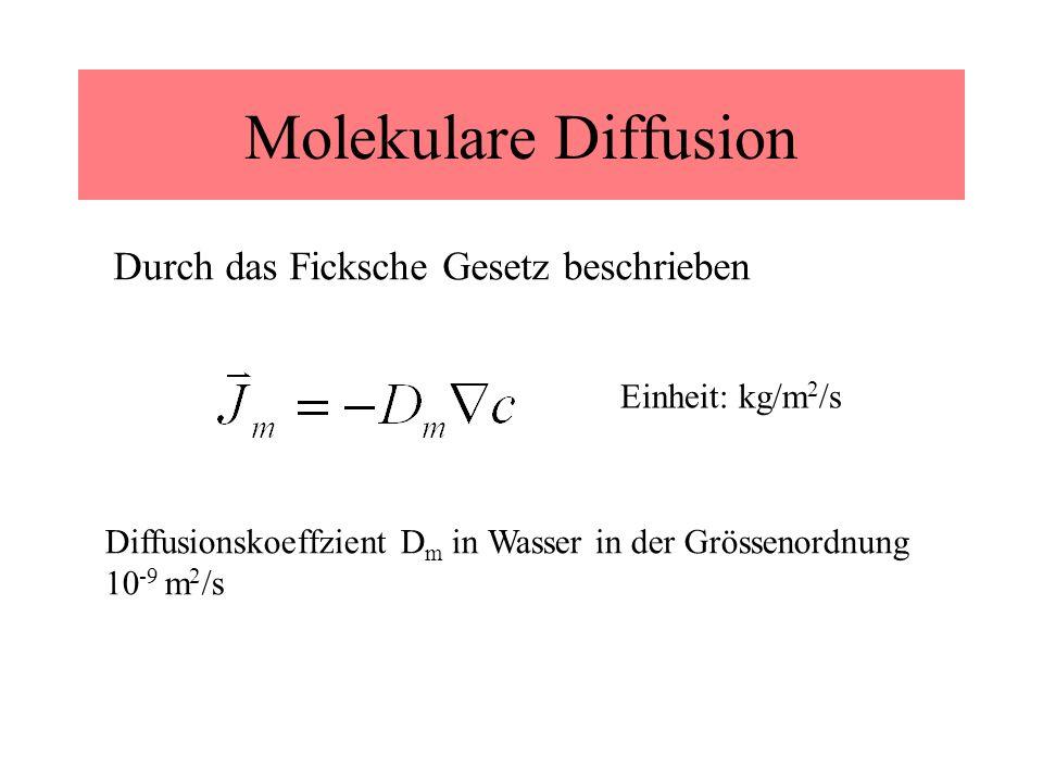 Molekulare Diffusion Durch das Ficksche Gesetz beschrieben Diffusionskoeffzient D m in Wasser in der Grössenordnung 10 -9 m 2 /s Einheit: kg/m 2 /s
