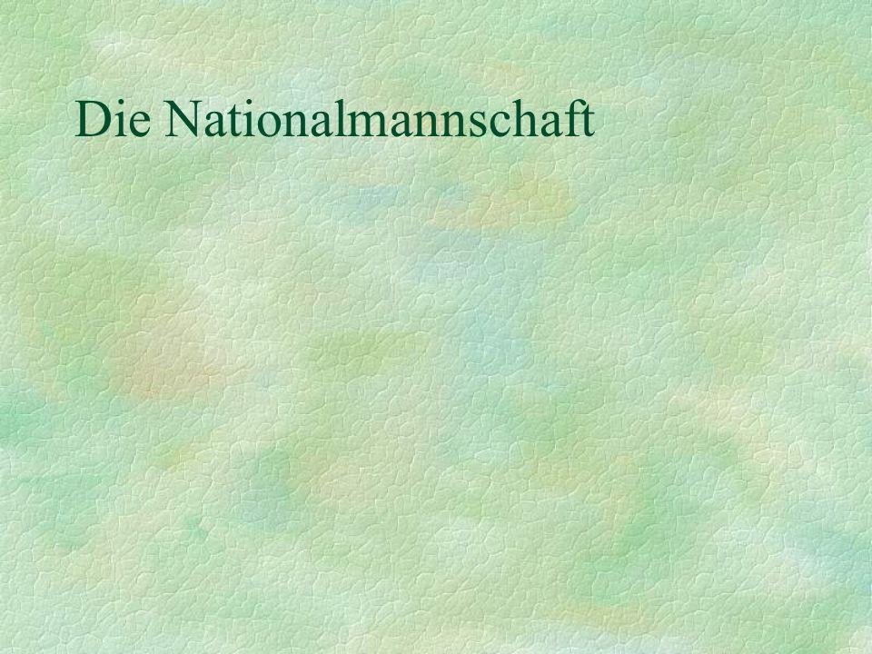 Männer-Nationalmannschaft Teamchef: Rudi Völler Trainer: Michael Skibbe und Erich Rutemöller Kader besteht aus Spielern der deutschen Vereine Waren dreimal Weltmeister und Europameister