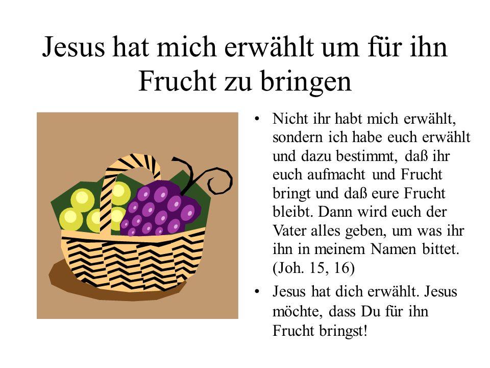 Jesus hat mich erwählt um für ihn Frucht zu bringen Nicht ihr habt mich erwählt, sondern ich habe euch erwählt und dazu bestimmt, daß ihr euch aufmach