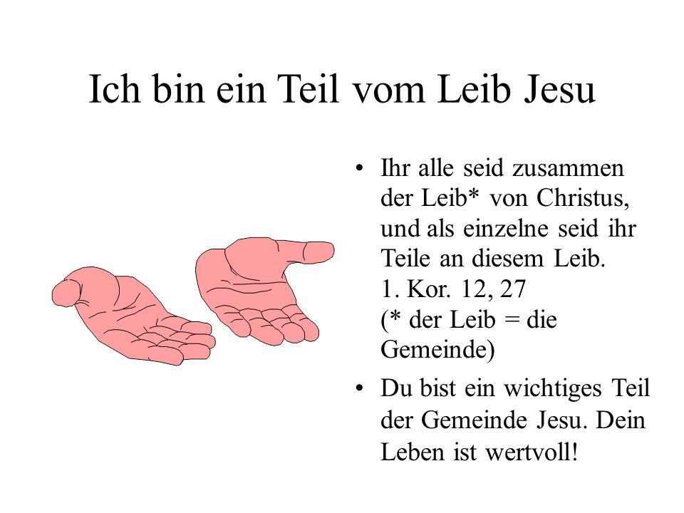 Ich bin ein Teil vom Leib Jesu Ihr alle seid zusammen der Leib* von Christus, und als einzelne seid ihr Teile an diesem Leib. 1. Kor. 12, 27 (* der Le