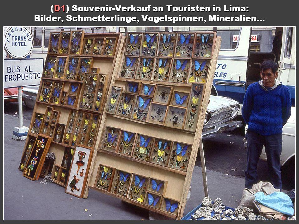Inhalt (D1) Souvenir-Verkauf an Touristen in Lima: Bilder, Schmetterlinge, Vogelspinnen, Mineralien...