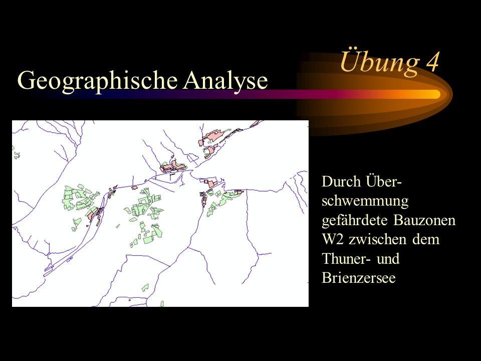 Übung 4 Geographische Analyse Durch Über- schwemmung gefährdete Bauzonen W2 zwischen dem Thuner- und Brienzersee