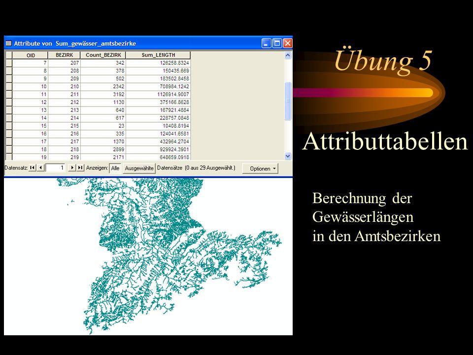Übung 5 Attributtabellen Berechnung der Gewässerlängen in den Amtsbezirken