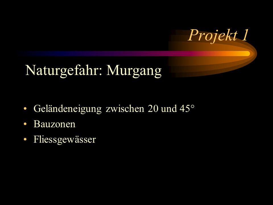 Projekt 1 Geländeneigung zwischen 20 und 45° Bauzonen Fliessgewässer Naturgefahr: Murgang