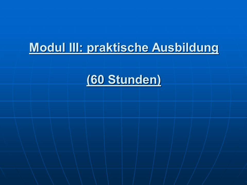 Modul III: praktische Ausbildung (60 Stunden)