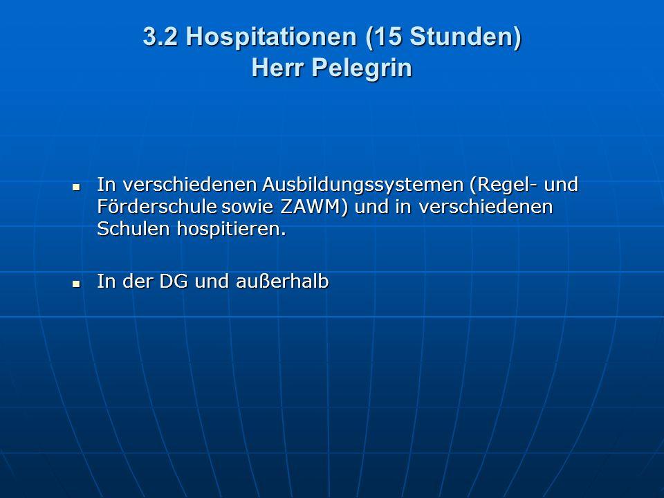 3.2 Hospitationen (15 Stunden) Herr Pelegrin In verschiedenen Ausbildungssystemen (Regel- und Förderschule sowie ZAWM) und in verschiedenen Schulen hospitieren.