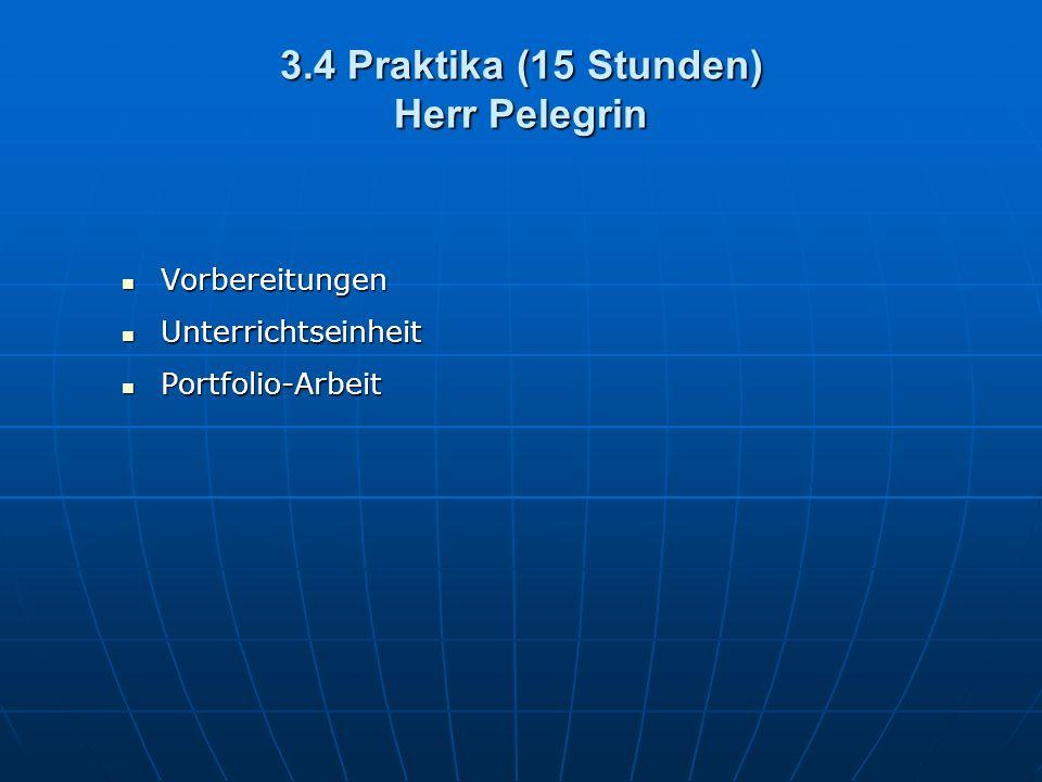 3.4 Praktika (15 Stunden) Herr Pelegrin Vorbereitungen Vorbereitungen Unterrichtseinheit Unterrichtseinheit Portfolio-Arbeit Portfolio-Arbeit