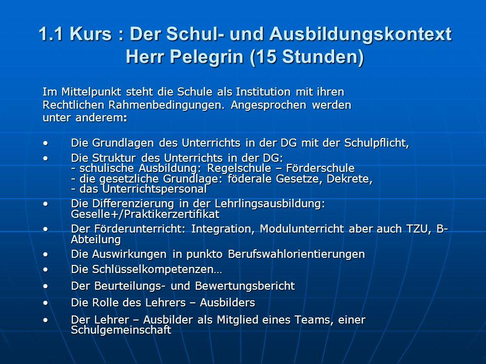1.1 Kurs : Der Schul- und Ausbildungskontext Herr Pelegrin (15 Stunden) Im Mittelpunkt steht die Schule als Institution mit ihren Rechtlichen Rahmenbedingungen.