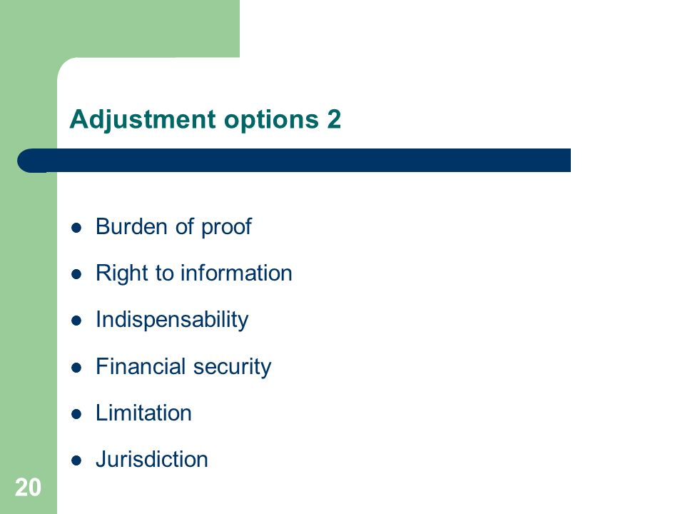 Adjustment options 1 Extend liability to non-pecuniary damages and environmental damage? Prescribe judgemental aspects for causality? Liability withou