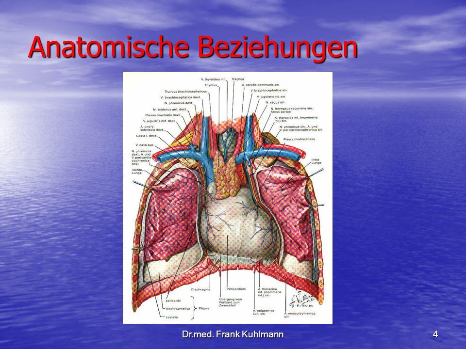 Dr.med. Frank Kuhlmann4 Anatomische Beziehungen