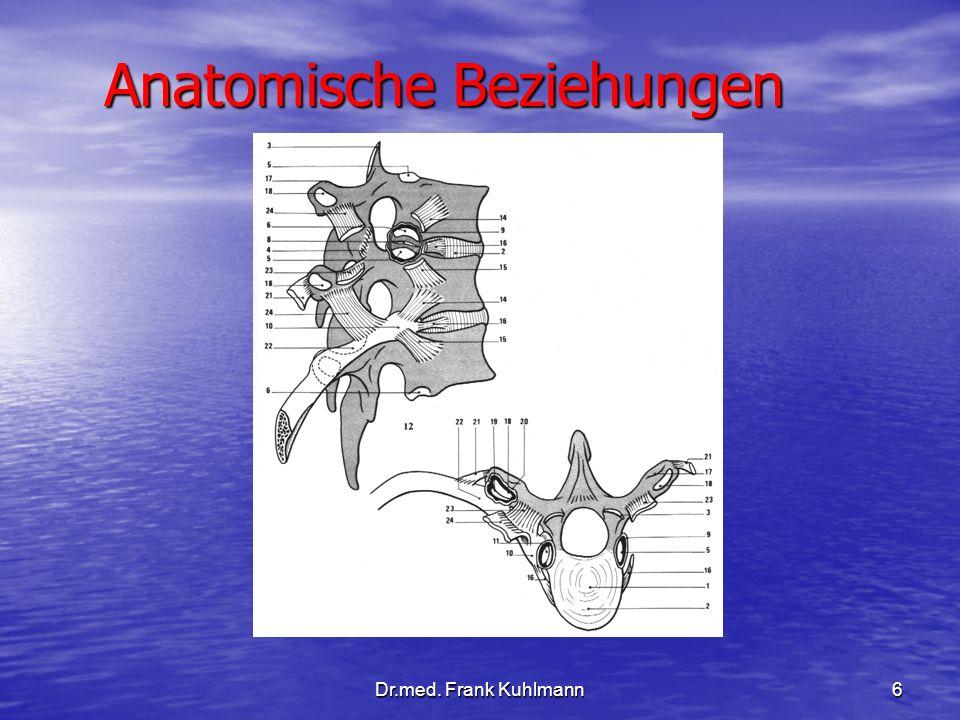 Dr.med. Frank Kuhlmann6 Anatomische Beziehungen