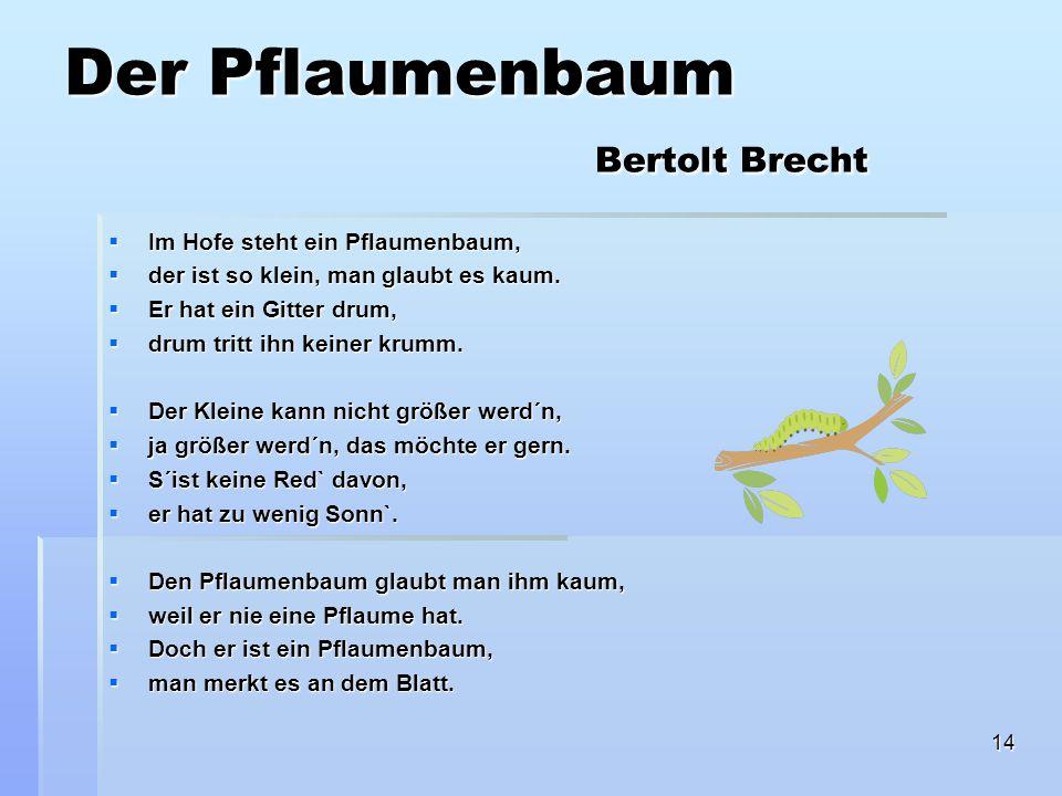 14 Der Pflaumenbaum Bertolt Brecht Im Hofe steht ein Pflaumenbaum, Im Hofe steht ein Pflaumenbaum, der ist so klein, man glaubt es kaum.