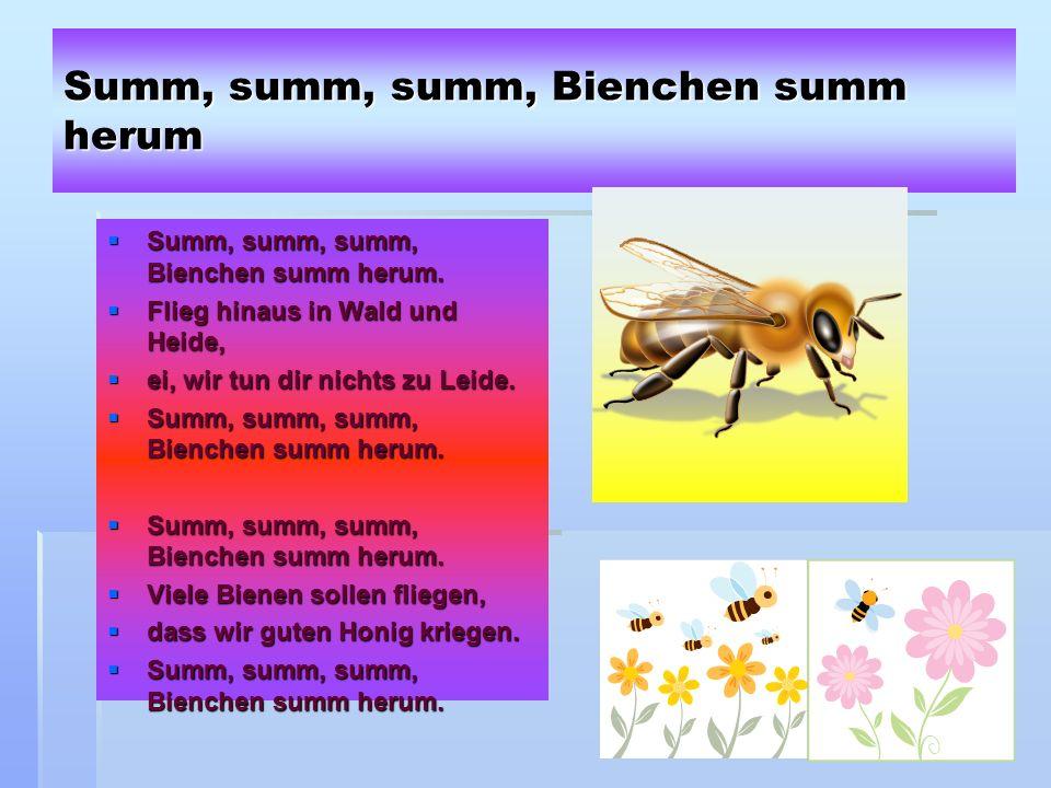 45 Summ, summ, summ, Bienchen summ herum Summ, summ, summ, Bienchen summ herum.