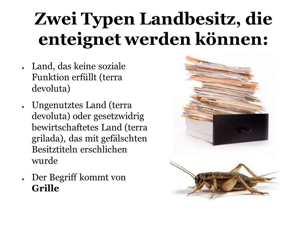 Zwei Typen Landbesitz, die enteignet werden können: Land, das keine soziale Funktion erfüllt (terra devoluta) Ungenutztes Land (terra devoluta) oder gesetzwidrig bewirtschaftetes Land (terra grilada), das mit gefälschten Besitztiteln erschlichen wurde Der Begriff kommt von Grille