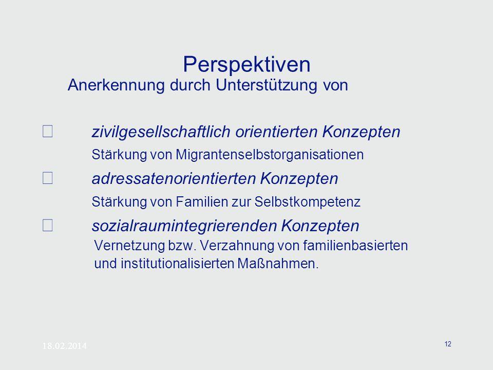 18.02.2014 12 Perspektiven Anerkennung durch Unterstützung von zivilgesellschaftlich orientierten Konzepten Stärkung von Migrantenselbstorganisationen