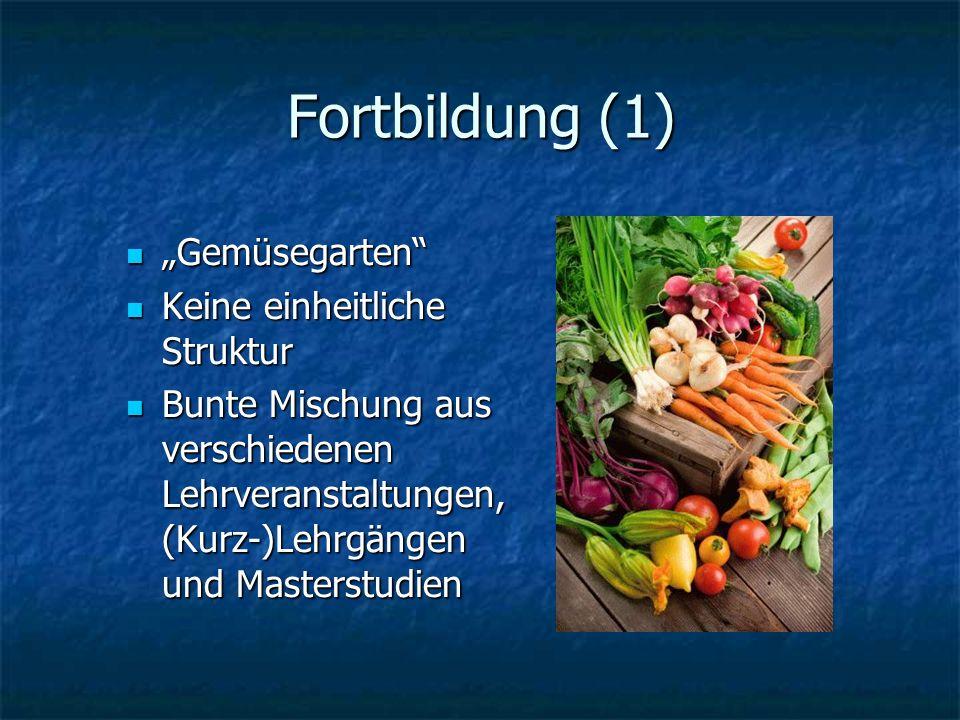 Fortbildung (1) Gemüsegarten Gemüsegarten Keine einheitliche Struktur Keine einheitliche Struktur Bunte Mischung aus verschiedenen Lehrveranstaltungen, (Kurz-)Lehrgängen und Masterstudien Bunte Mischung aus verschiedenen Lehrveranstaltungen, (Kurz-)Lehrgängen und Masterstudien