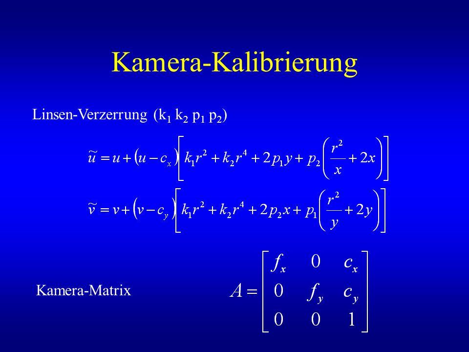 Kamera-Kalibrierung Linsen-Verzerrung (k 1 k 2 p 1 p 2 ) Kamera-Matrix