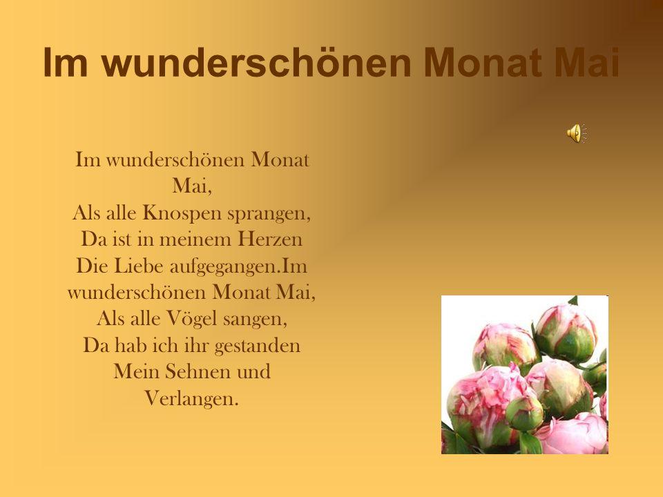Im wunderschönen Monat Mai Im wunderschönen Monat Mai, Als alle Knospen sprangen, Da ist in meinem Herzen Die Liebe aufgegangen.Im wunderschönen Monat Mai, Als alle Vögel sangen, Da hab ich ihr gestanden Mein Sehnen und Verlangen.