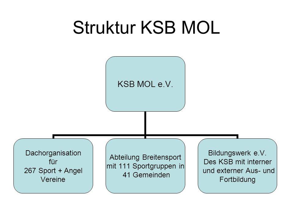 Struktur KSB MOL KSB MOL e.V. Dachorganisation für 267 Sport + Angel Vereine Abteilung Breitensport mit 111 Sportgruppen in 41 Gemeinden Bildungswerk