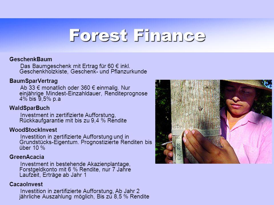 Forest Finance GeschenkBaum Das Baumgeschenk mit Ertrag für 60 inkl.