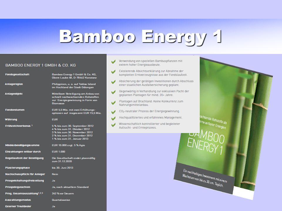 Bamboo Energy 1