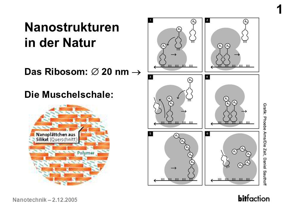 Nanotechnik – 2.12.2005 Nanostrukturen in der Natur Das Ribosom: 20 nm Die Muschelschale: 1