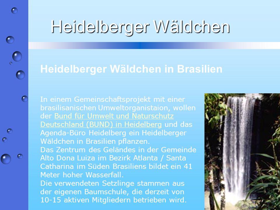 Heidelberger Wäldchen In einem Gemeinschaftsprojekt mit einer brasilisanischen Umweltorganistaion, wollen der Bund für Umwelt und Naturschutz Deutschl