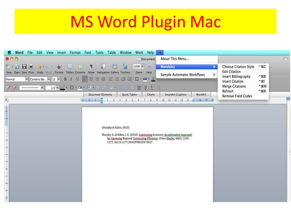 MS Word Plugin Mac
