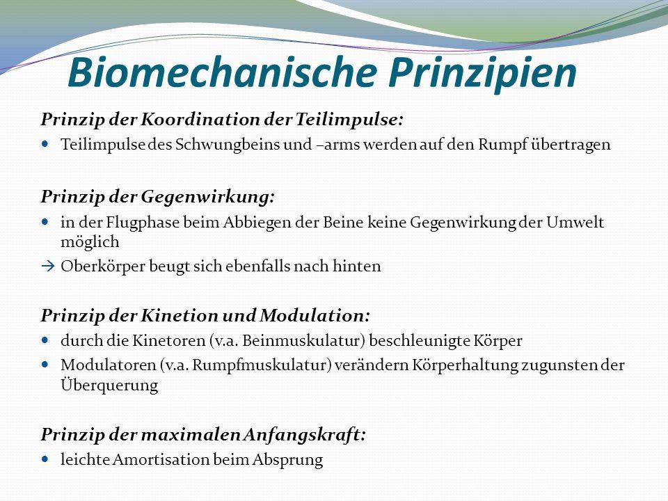 Biomechanische Prinzipien Prinzip der Koordination der Teilimpulse: Teilimpulse des Schwungbeins und –arms werden auf den Rumpf übertragen Prinzip der