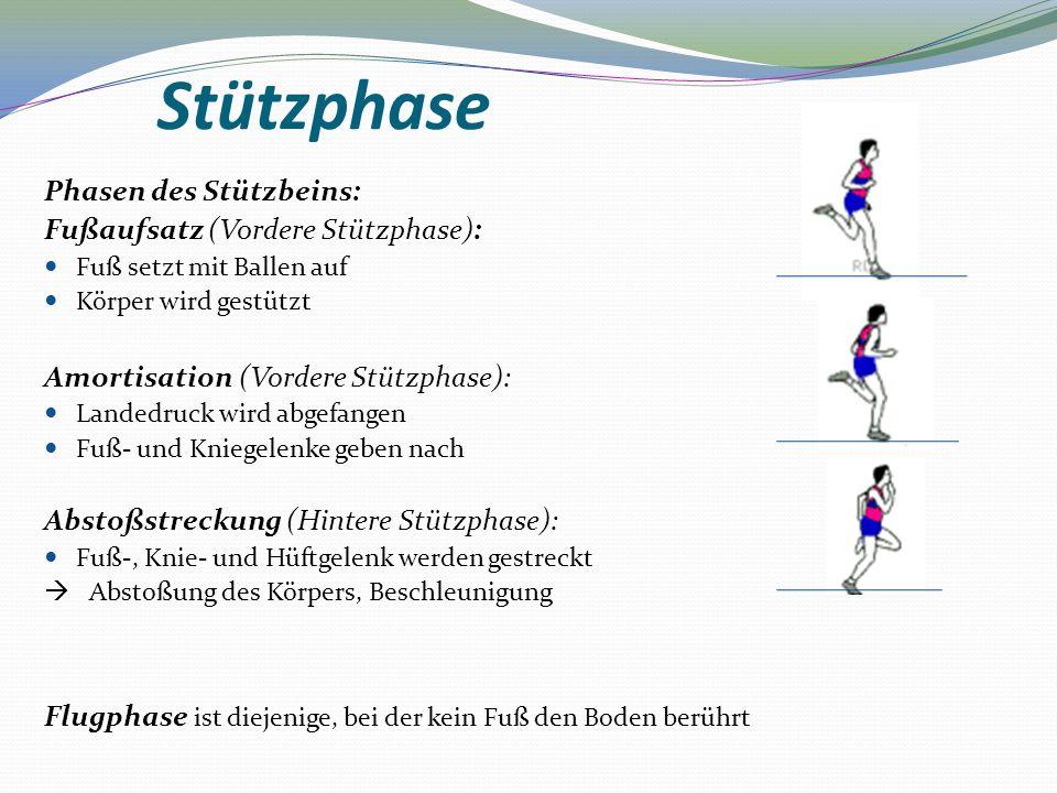 Stützphase Phasen des Stützbeins: Fußaufsatz (Vordere Stützphase): Fuß setzt mit Ballen auf Körper wird gestützt Amortisation (Vordere Stützphase): La
