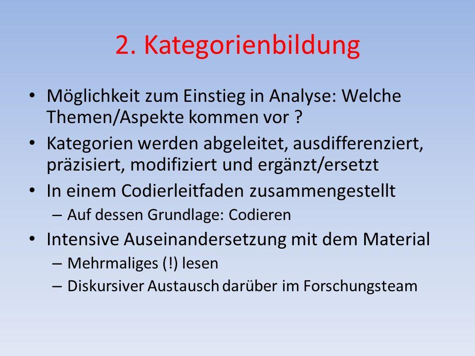 2. Kategorienbildung Möglichkeit zum Einstieg in Analyse: Welche Themen/Aspekte kommen vor ? Kategorien werden abgeleitet, ausdifferenziert, präzisier