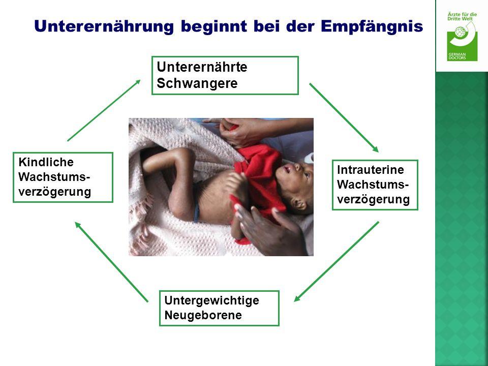 Unterernährung beginnt bei der Empfängnis Unterernährte Schwangere Kindliche Wachstums- verzögerung Intrauterine Wachstums- verzögerung Untergewichtig