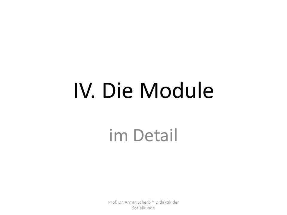 IV. Die Module im Detail Prof. Dr. Armin Scherb * Didaktik der Sozialkunde