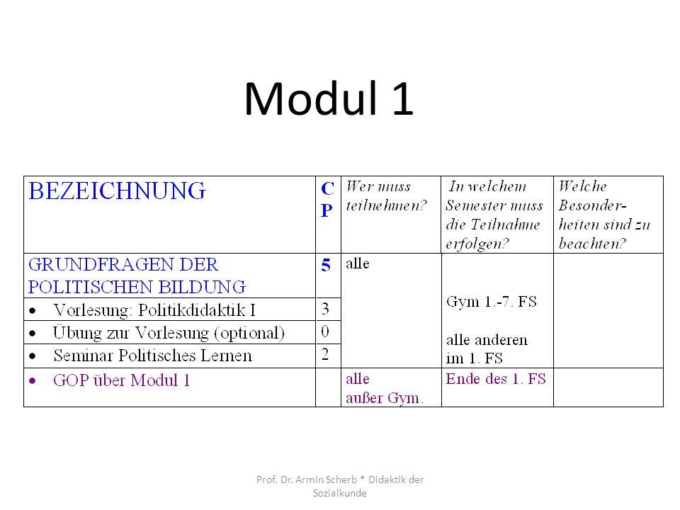 Modul 1 Prof. Dr. Armin Scherb * Didaktik der Sozialkunde