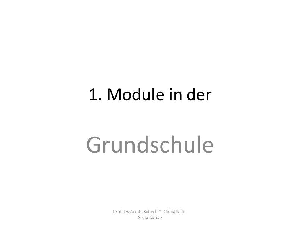 1. Module in der Grundschule Prof. Dr. Armin Scherb * Didaktik der Sozialkunde