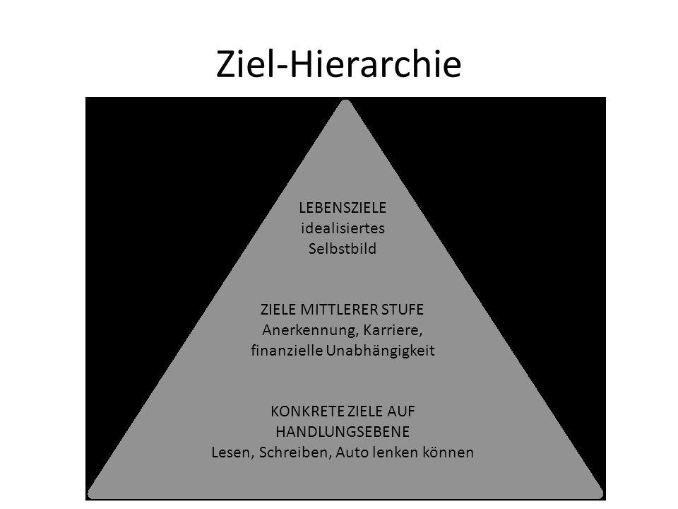 Ziel-Hierarchie LEBENSZIELE idealisiertes Selbstbild ZIELE MITTLERER STUFE Anerkennung, Karriere, finanzielle Unabhängigkeit KONKRETE ZIELE AUF HANDLU