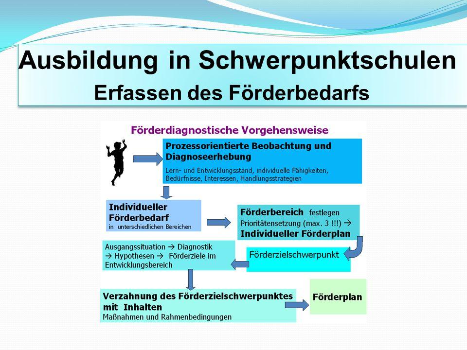 Ausbildung in Schwerpunktschulen Entwicklung eines Förderkonzeptes Welche Förderkonzepte / Förderpläne bestehen bereits .