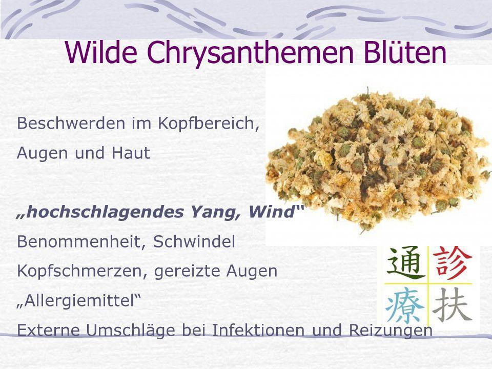 Wilde Chrysanthemen Blüten Beschwerden im Kopfbereich, Augen und Haut hochschlagendes Yang, Wind Benommenheit, Schwindel Kopfschmerzen, gereizte Augen