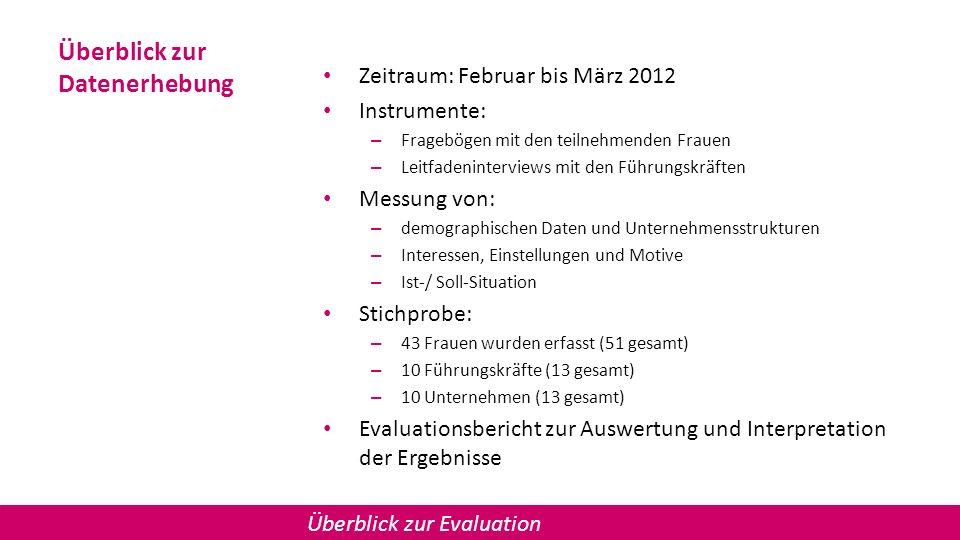 Überblick zur Datenerhebung Zeitraum: Februar bis März 2012 Instrumente: – Fragebögen mit den teilnehmenden Frauen – Leitfadeninterviews mit den Führu