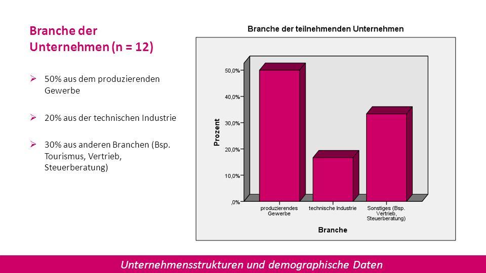 Branche der Unternehmen (n = 12) 50% aus dem produzierenden Gewerbe 20% aus der technischen Industrie 30% aus anderen Branchen (Bsp. Tourismus, Vertri