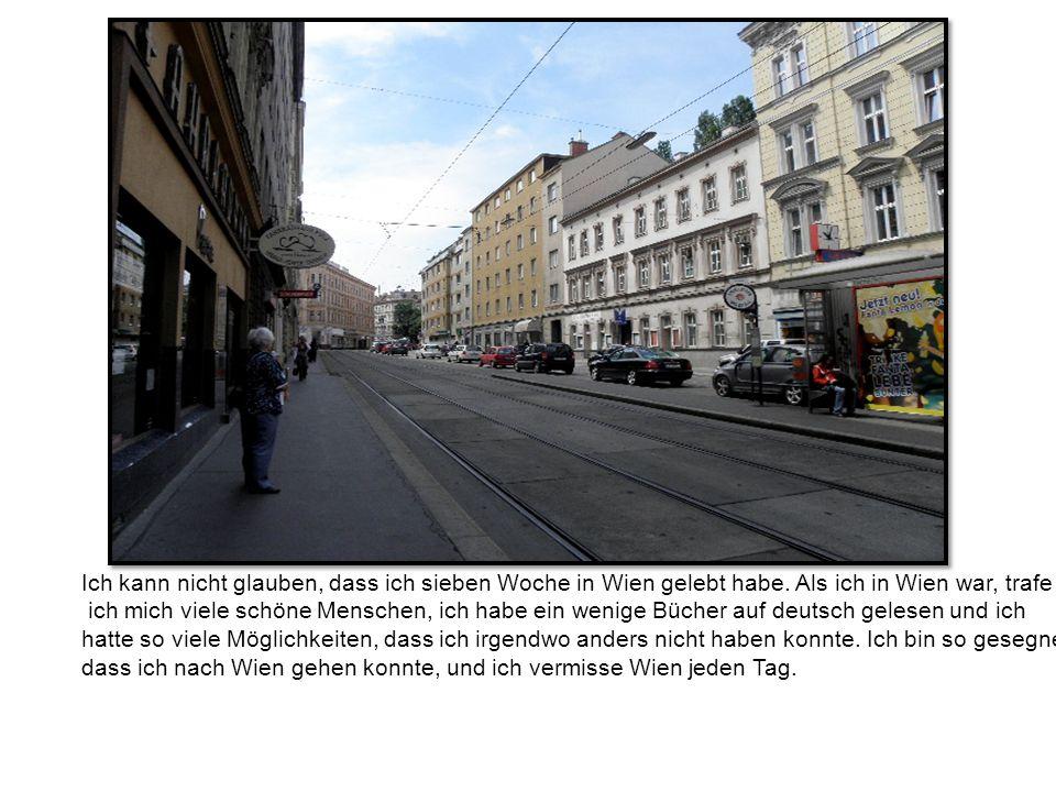 Ich kann nicht glauben, dass ich sieben Woche in Wien gelebt habe.