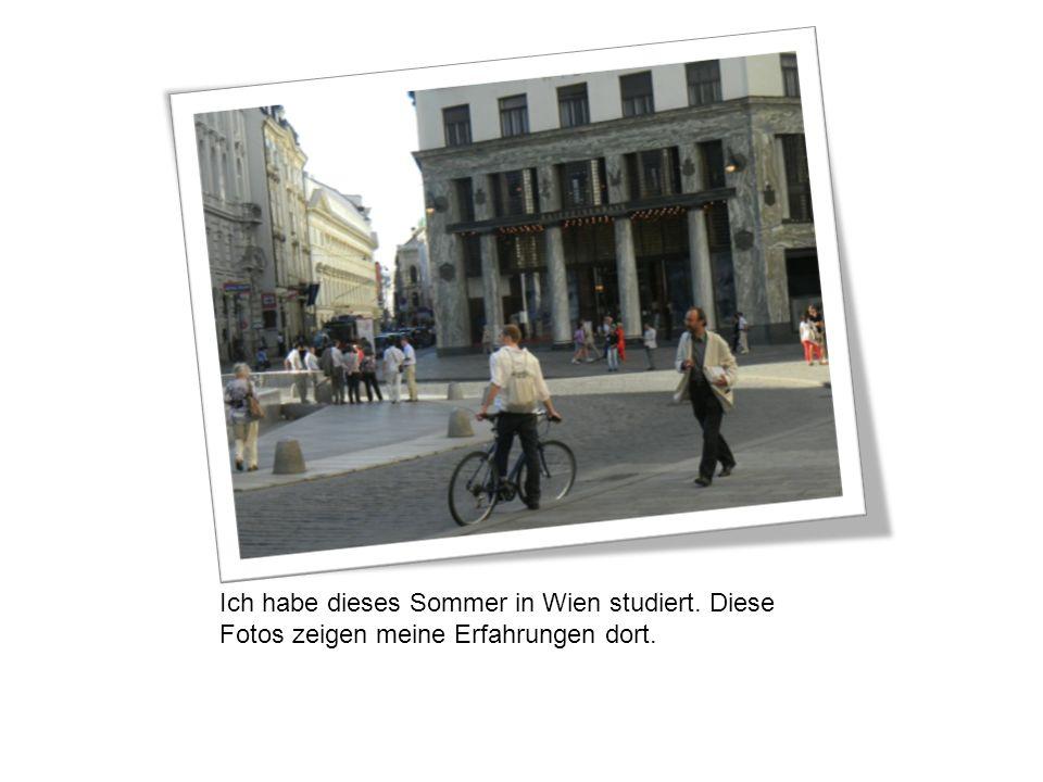 Ich habe dieses Sommer in Wien studiert. Diese Fotos zeigen meine Erfahrungen dort.