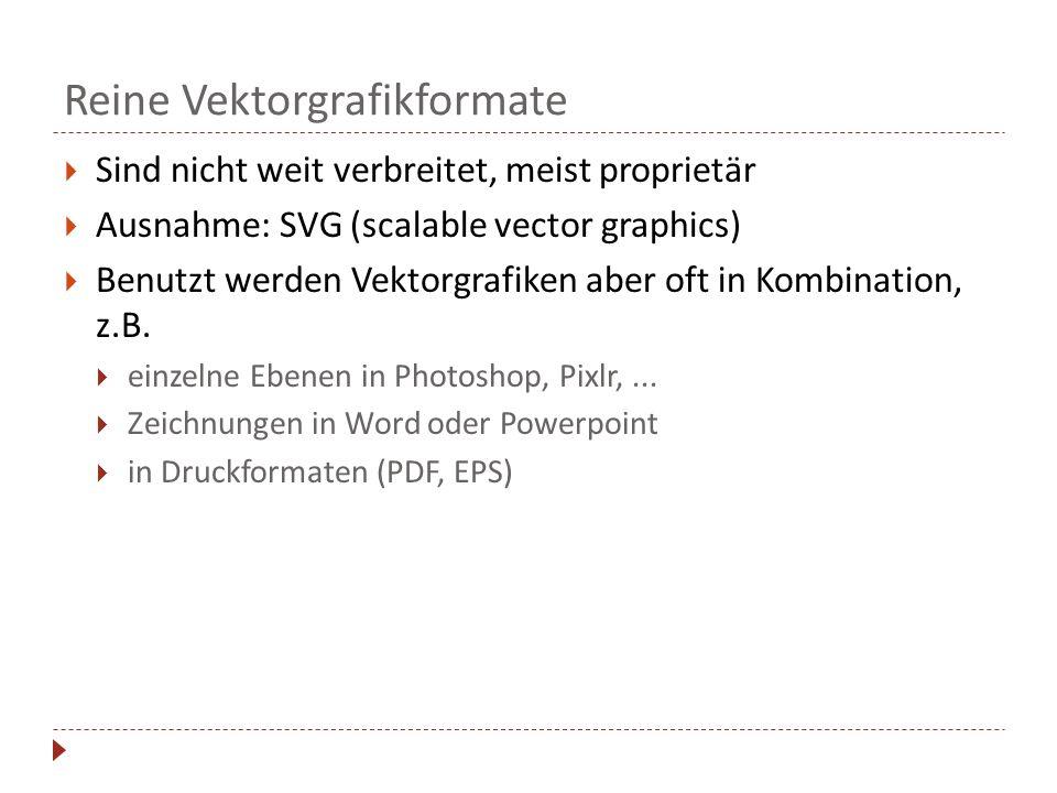 Reine Vektorgrafikformate Sind nicht weit verbreitet, meist proprietär Ausnahme: SVG (scalable vector graphics) Benutzt werden Vektorgrafiken aber oft