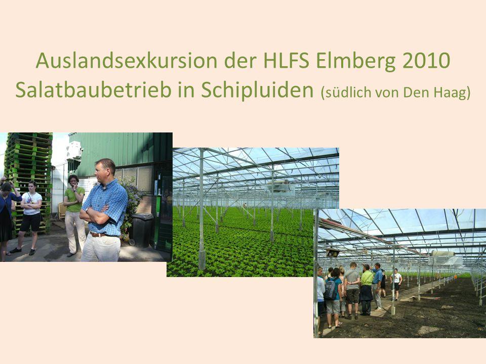 Auslandsexkursion der HLFS Elmberg 2010 Salatbaubetrieb in Schipluiden (südlich von Den Haag)