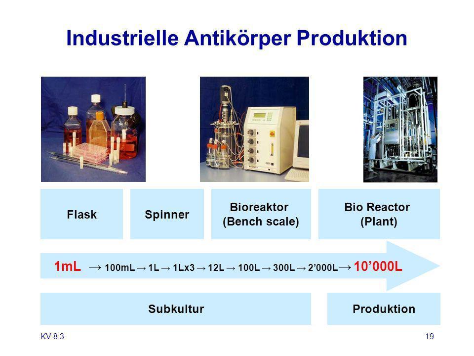 KV 8.319 Industrielle Antikörper Produktion FlaskSpinner Bioreaktor (Bench scale) Bio Reactor (Plant) SubkulturProduktion 1mL 100mL 1L 1Lx3 12L 100L 3