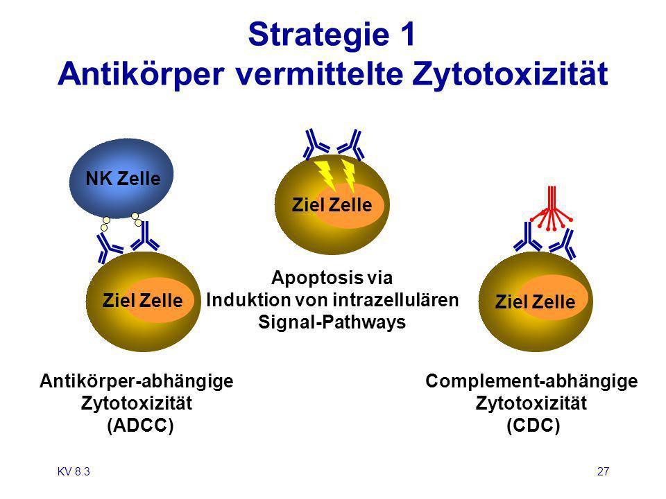 KV 8.327 Antikörper-abhängige Zytotoxizität (ADCC) Apoptosis via Induktion von intrazellulären Signal-Pathways Complement-abhängige Zytotoxizität (CDC