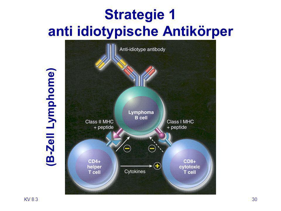 KV 8.330 Strategie 1 anti idiotypische Antikörper (B-Zell Lymphome)