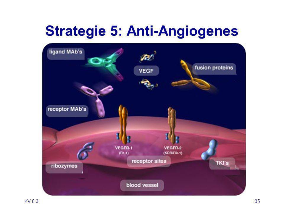KV 8.335 Strategie 5: Anti-Angiogenes
